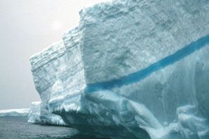Cracks in icebergs may fill with freshwater and freeze as blue lines.