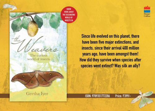 The Weavers-The Curious world of Insects